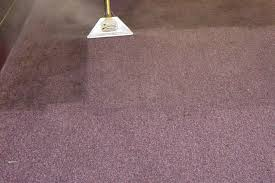 carpet cleaning Hollywood